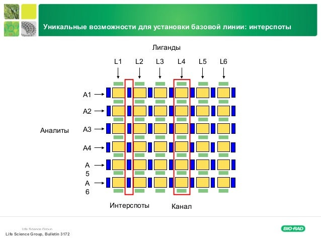 Life Science Group Лиганды Аналиты L1 L2 L3 L4 L5 L6 A1 A2 A3 A4 A 5 A 6 Интерспоты Канал Life Science Group, Bulletin 317...