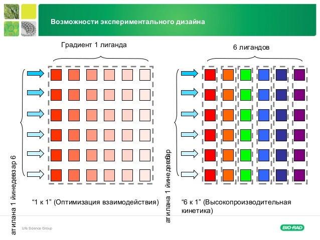 """Life Science Group Возможности экспериментального дизайна """"1 к 1"""" (Оптимизация взаимодействия) 6 лигандовГрадиент 1 лиганд..."""