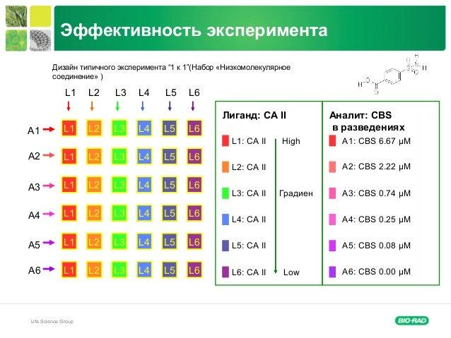 "Life Science Group Эффективность эксперимента A1 A2 A3 A4 A5 A6 L1 L2 L3 L4 L5 L6 Дизайн типичного эксперимента ""1 к 1""(На..."