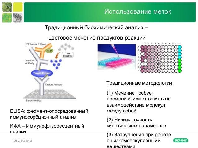 Life Science Group Использование меток Традиционный биохимический анализ – цветовое мечение продуктов реакции ELISA: ферме...