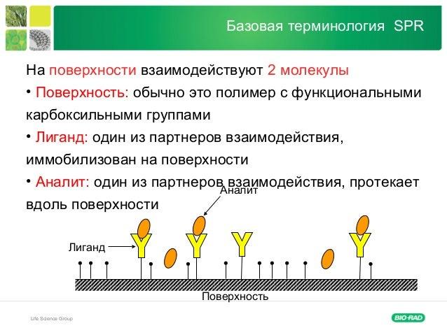 Life Science Group Базовая терминология SPR На поверхности взаимодействуют 2 молекулы • Поверхность: обычно это полимер с ...