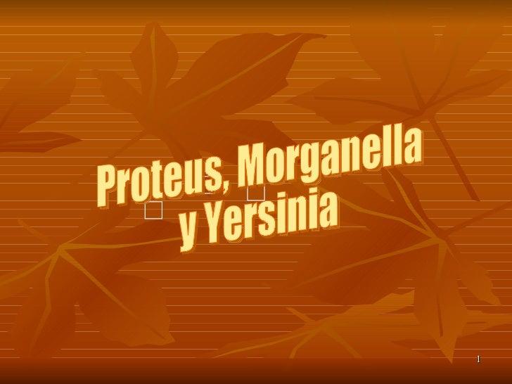 Proteus, Morganella y Yersinia