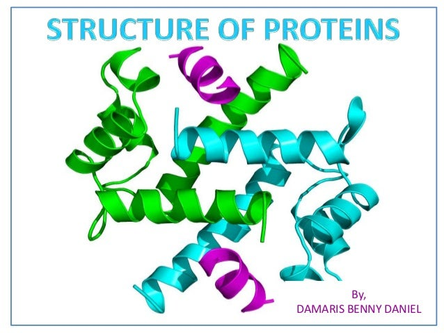 protein structure Orders of protein structure: primary, secondary, tertiary, and quaternary alpha helix and beta pleated sheet.