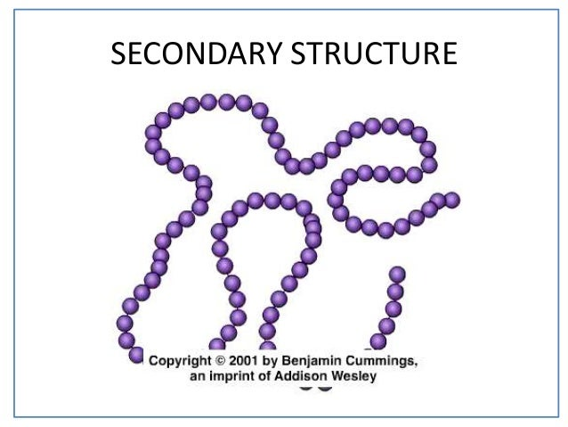 12  secondary structure