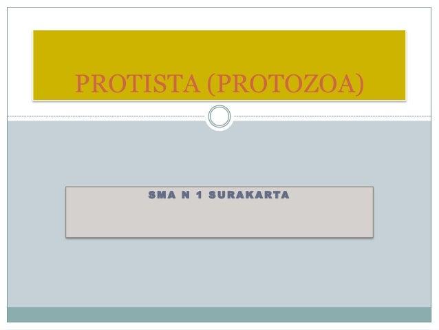 S M A N 1 S U R A K A R TA PROTISTA (PROTOZOA)