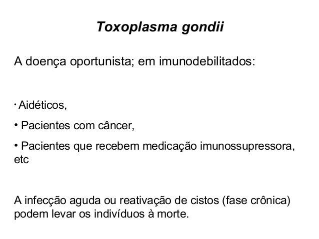 Toxoplasma gondii  Transmissão para o homem:  •Oocistos nas fezes de gatos jovens não-imunes  •Cistos na carne crua (princ...