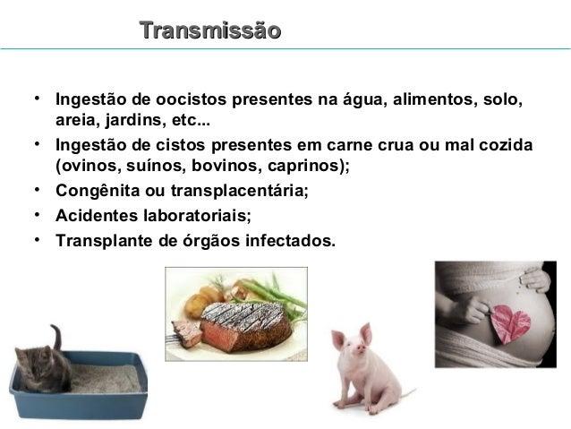 Toxoplasmose  Profilaxia:  •Não se alimentar de leite cru ou carne crua ou mal cozida  •Controlar população de gatos vadio...
