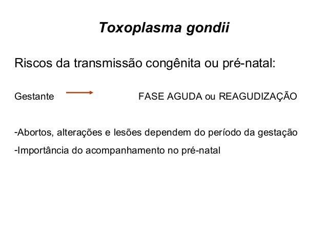 1995/1996  • Soro obtido de um banco;  • População geral entre 0-79 anos de idade;  • Prevalência de IgG anti- T. gondii: ...