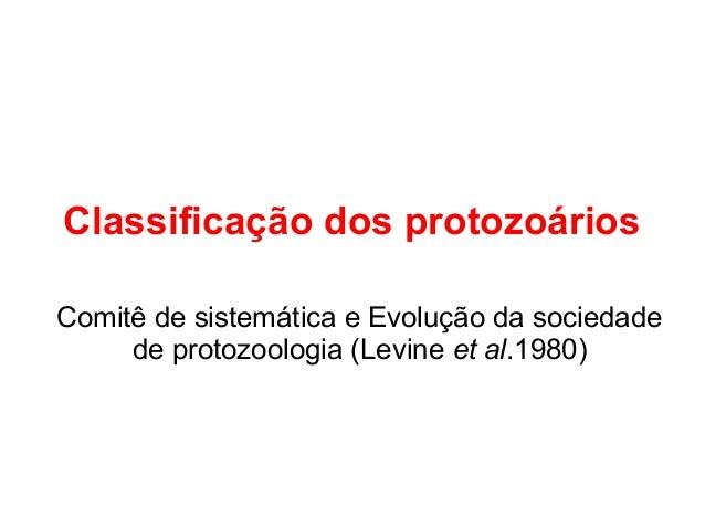 Classificação dos protozoários  Comitê de sistemática e Evolução da sociedade  de protozoologia (Levine et al.1980)