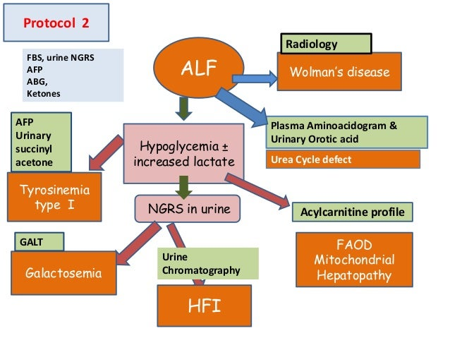 ALF NGRS in urine FBS, urine NGRS AFP ABG, Ketones Galactosemia Tyrosinemia type I HFI Hypoglycemia ± increased lactate AF...