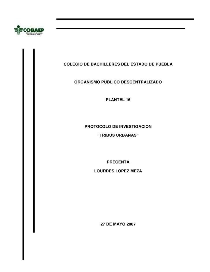 -556260-137795<br />COLEGIO DE BACHILLERES DEL ESTADO DE PUEBLAORGANISMO PÚBLICO DESCENTRALIZADOPLANTEL 16PROTOCOLO DE INV...