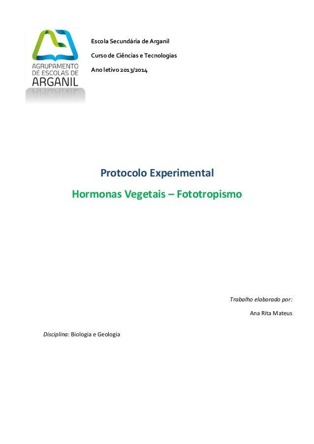 1 Escola Secundária de Arganil Curso de Ciências e Tecnologias Ano letivo 2013/2014 Protocolo Experimental Hormonas Vegeta...