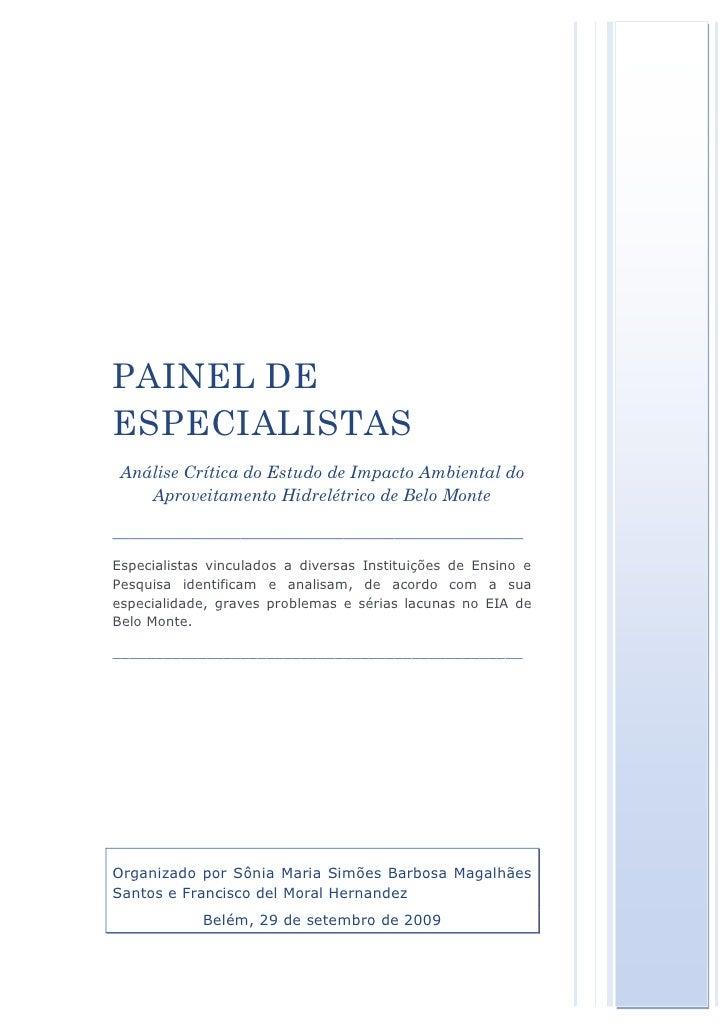 Protocolo Ibama Online 1