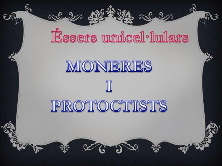 PresentacióMoneresBacteris perjudicialsBacteris beneficiososProtoctistsLes parts d'un protoctistLes característiques d'un ...