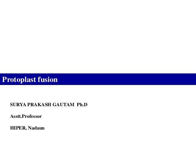 Protoplast fusion  SURYA PRAKASH GAUTAM Ph.D  Asstt.Professor  HIPER, Nadaun