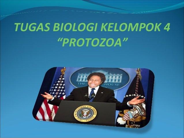 "TUGAS BIOLOGI KELOMPOK 4 ""PROTOZOA"""