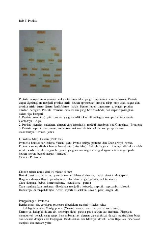 7300 Koleksi Gambar Hewan Bersel Satu Protozoa Terbaru