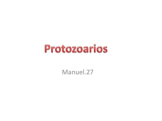 Protozoarios   <br />Manuel.27 <br />