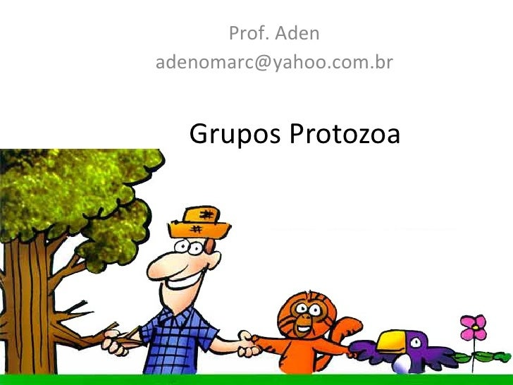 Grupos Protozoa Prof. Aden [email_address]