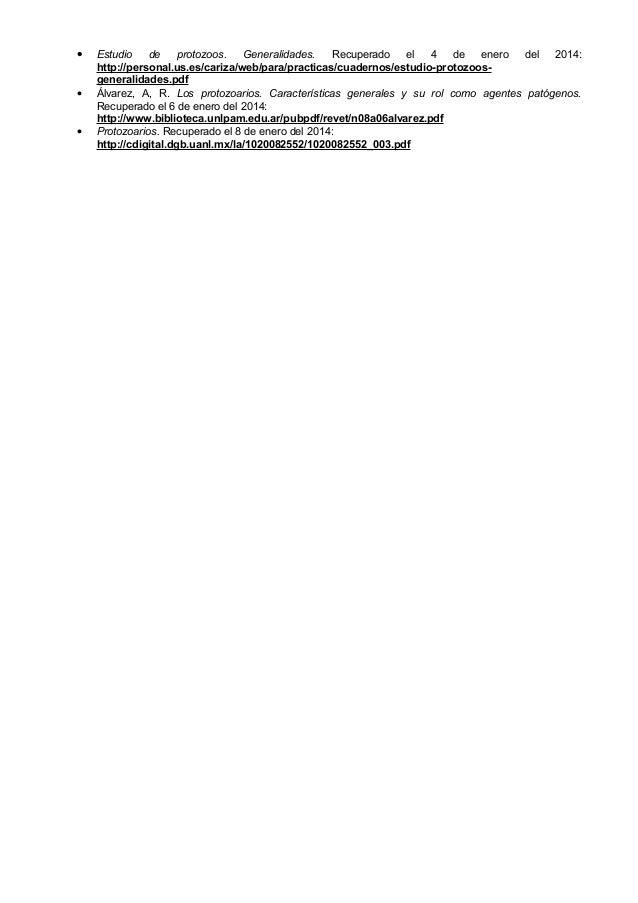 Protozoarios (Morfología General) Slide 3