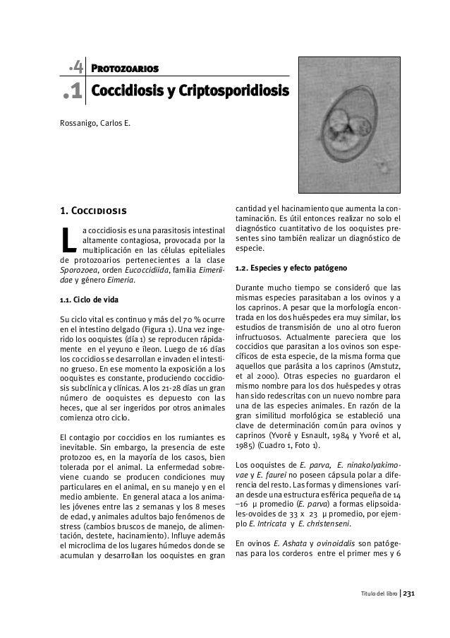 .4 Protozoarios  .1  Rossanigo, Carlos E.  1. Coccidiosis  a coccidiosis es una parasitosis intestinal  altamente contagio...