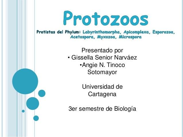 Presentado por • Gissella Senior Narváez •Angie N. Tinoco Sotomayor Universidad de Cartagena 3er semestre de Biología