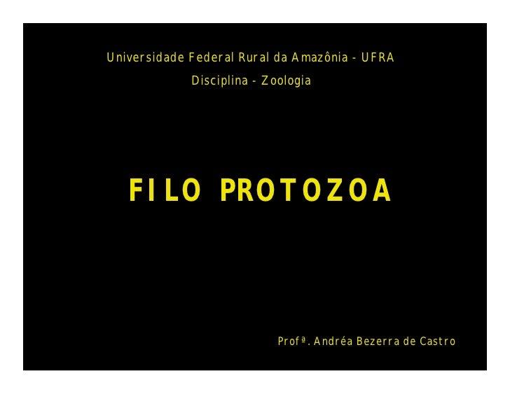 Universidade Federal Rural da Amazônia - UFRA             Disciplina - Zoologia   FILO PROTOZOA                           ...