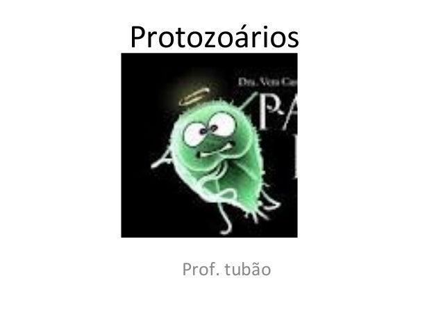 Protozoários   Prof. tubão