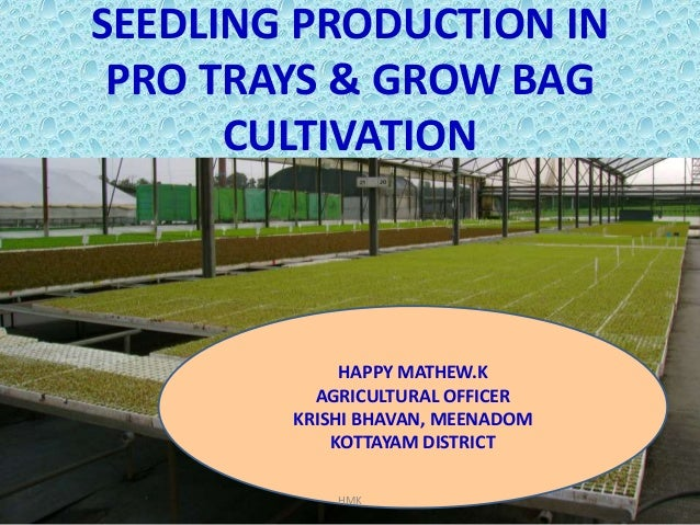 Pro-tray Seedling Production & Grow Bag Cultivation