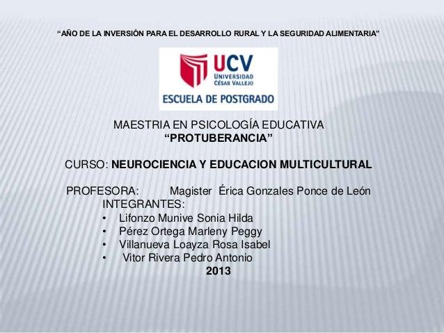 """""""AÑO DE LA INVERSIÓN PARA EL DESARROLLO RURAL Y LA SEGURIDAD ALIMENTARIA"""" MAESTRIA EN PSICOLOGÍA EDUCATIVA """"PROTUBERANCIA""""..."""