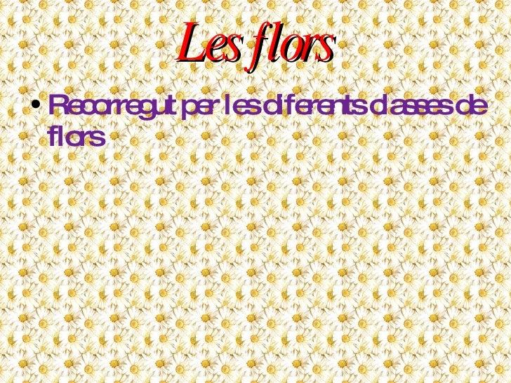 Les flors <ul><li>Recorregut per les diferents classes de flors </li></ul>