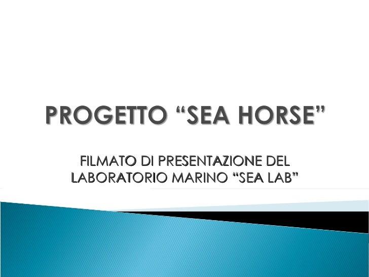 """FILMATO DI PRESENTAZIONE DEL LABORATORIO MARINO """"SEA LAB"""""""