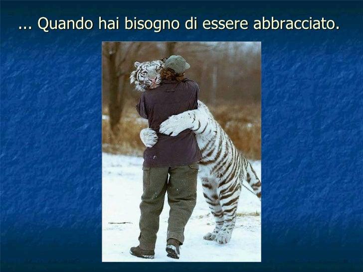... Quando hai bisogno di essere abbracciato.