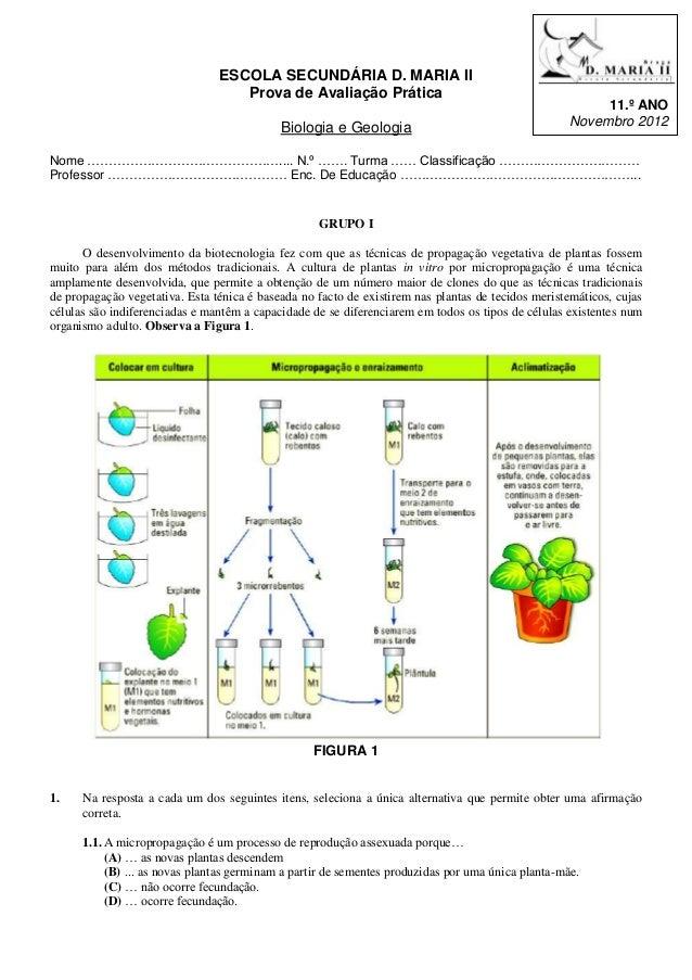 ESCOLA SECUNDÁRIA D. MARIA II                                   Prova de Avaliação Prática                                ...