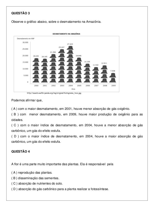 Prova 7º ano - 4º bimestre - 2010 - SME Slide 3