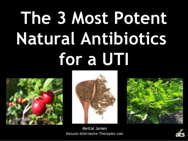 The 3 Most Potent Natural Antibiotics for a UTI Meital James Natural-Alternative-Therapies.com
