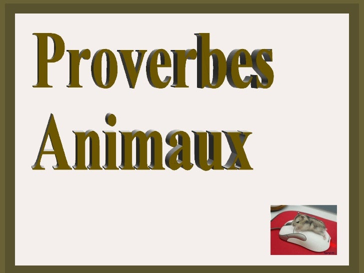 Proverbes Animaux