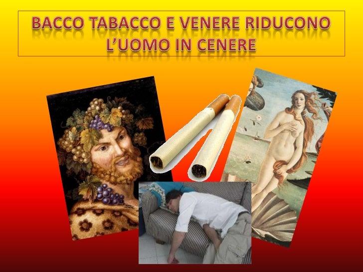 Risultati immagini per bacco tabacco e venere riducono l'uomo in cenere