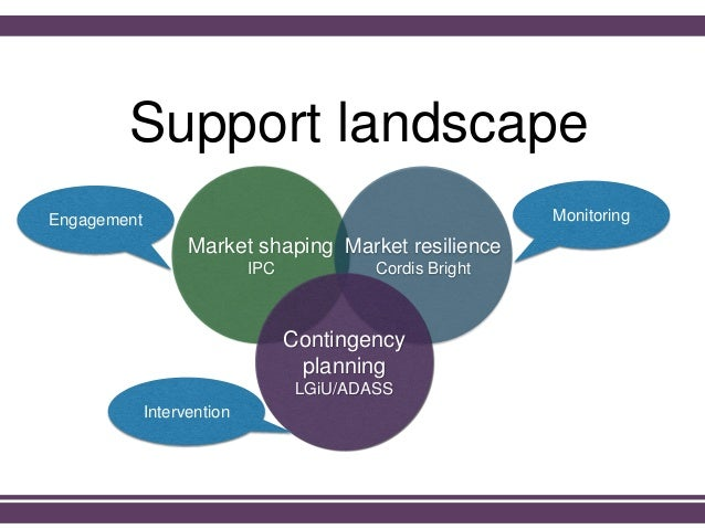 Support landscape Market shaping IPC Market resilience Cordis Bright Contingency planning LGiU/ADASS MonitoringEngagement ...