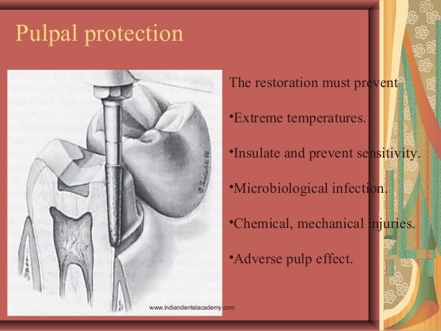 Pulpal protection The restoration must prevent •Extreme temperatures. •Insulate and prevent sensitivity. •Microbiological ...