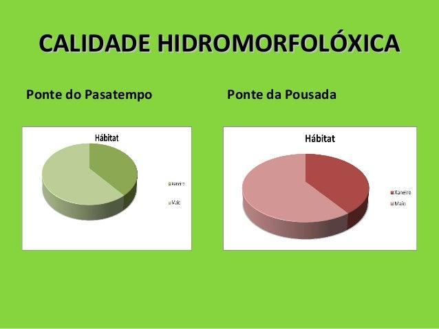 CALIDADE HIDROMORFOLÓXICACALIDADE HIDROMORFOLÓXICA Ponte do Pasatempo Ponte da Pousada