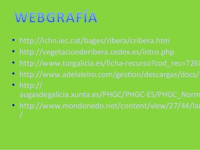 • http://ichn.iec.cat/bages/ribera/cribera.htm • http://vegetacionderibera.cedex.es/intro.php • http://www.turgalicia.es/f...