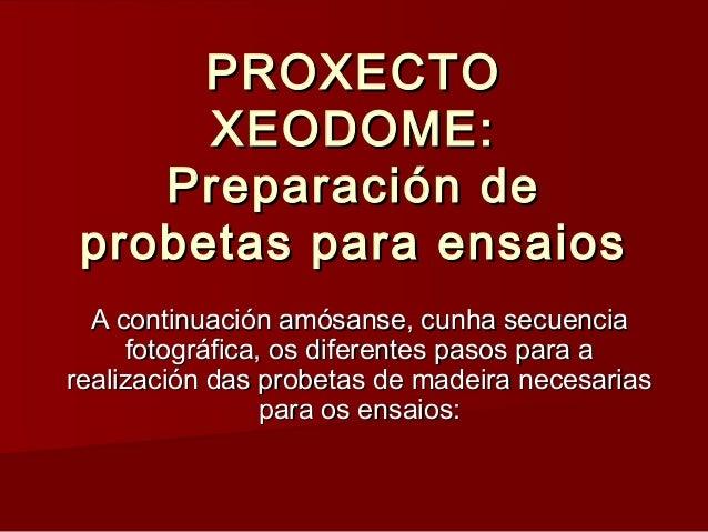 PROXECTOPROXECTO XEODOME:XEODOME: Preparación dePreparación de probetas para ensaiosprobetas para ensaios A continuación a...