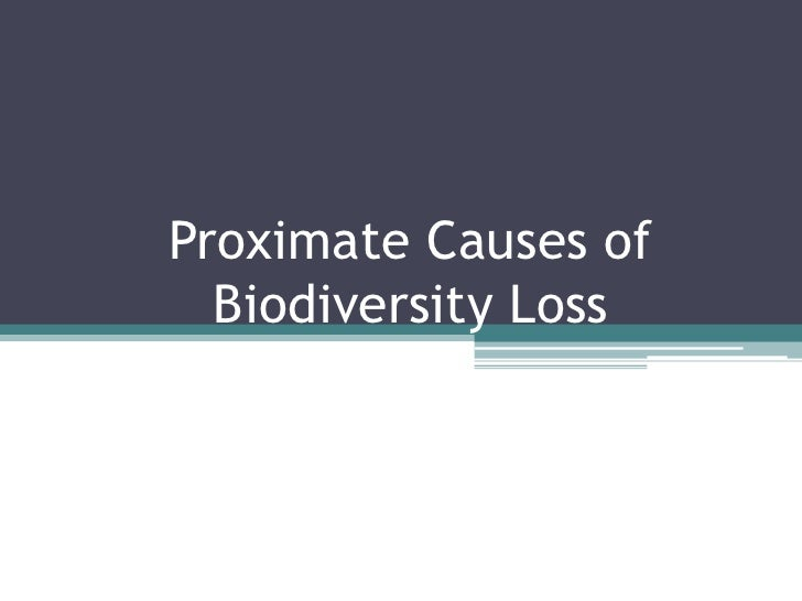 Proximate Causes of Biodiversity Loss <br />