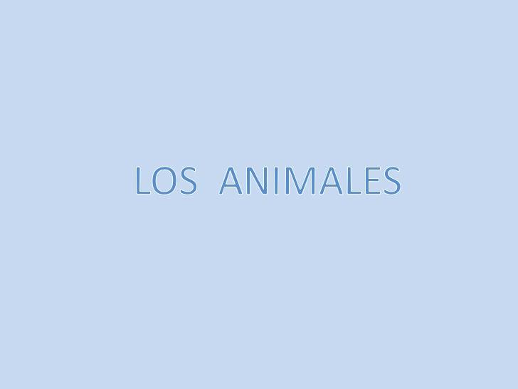 ¿QUÉ SABEMOS DE LOS ANIMALES?•LOS TIGRES COMEN CARNE, LAS ARDILLAS BELLOTAS, LOS ELEFANTES COMENCACAHUETES, LOS CABALLOS H...