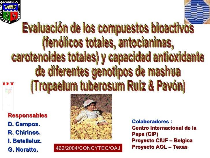 Responsables D. Campos. R. Chirinos. I. Betalleluz. G. Noratto. 462/2004/CONCYTEC/OAJ Colaboradores : Centro Internacional...