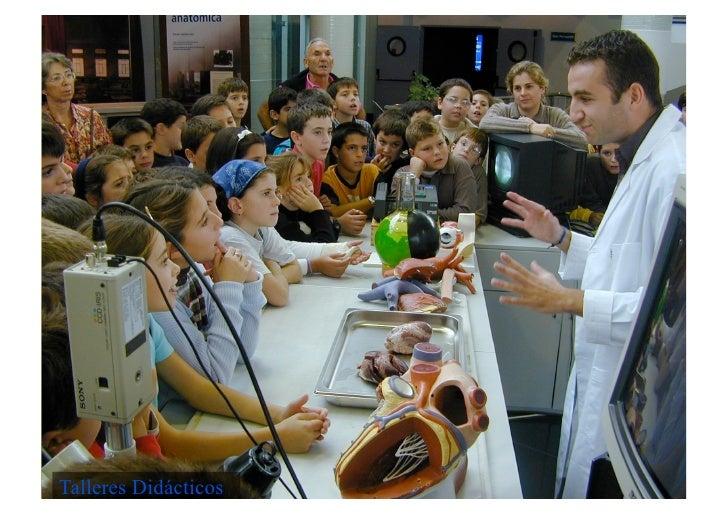 Carácter general   • Establecer líneas cooperación con Museos • Funcionamiento técnico instalaciones seres vivos • Planifi...