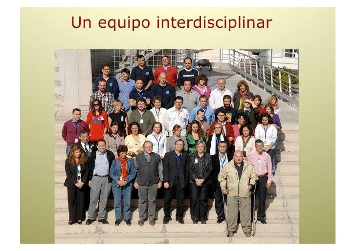 Formación AREAS de Actividad    (Programas propios y asoc. a la Universidad/Junta Andalucía.. Post-grado, Master,         ...