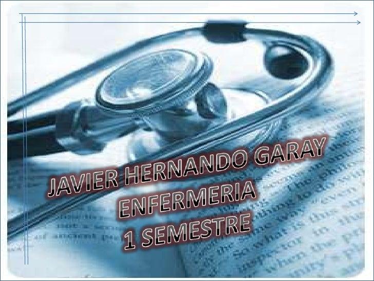 JAVIER HERNANDO GARAY<br />ENFERMERIA <br />1 SEMESTRE<br />