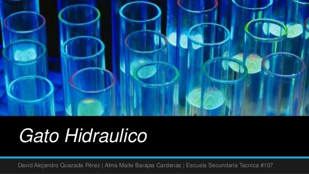 Gato HidraulicoDavid Alejandro Quezada Pérez | Alma Maite Barajas Cardenas | Escuela Secundaria Tecnica #107